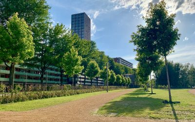 #Spoorpark #Tilburg, voor de grote opening